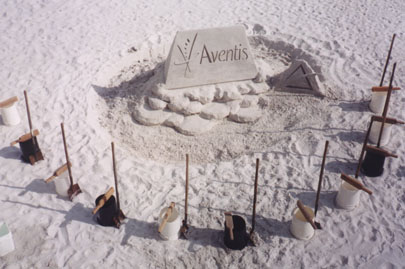 Aventis Set Up